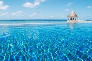 Taj Coral Reef