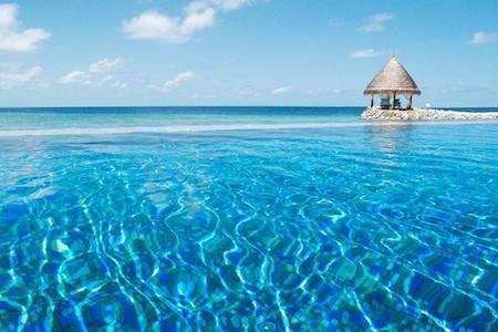 450 300 Taj Vivanta Coral reef