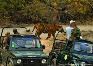 Tiger Safari Ranthambore